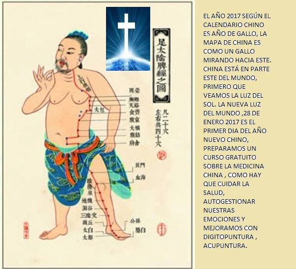 Curso Basico de medicina China